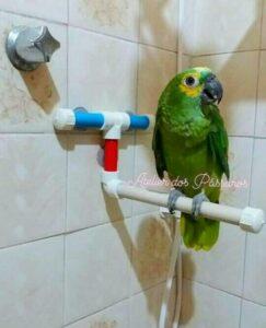 Suporte para Banho com Ventosas com Papagaio