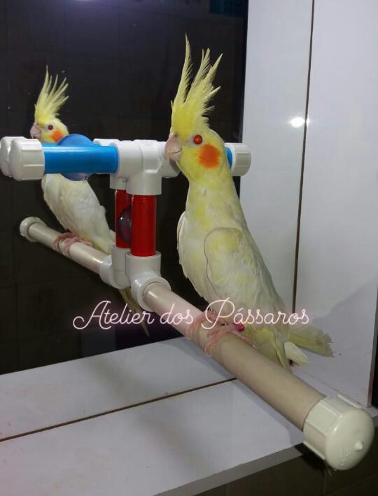 Suporte para Banho com Ventosas no Espelho