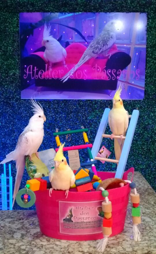 Atelier dos Pássaros - Como Comprar